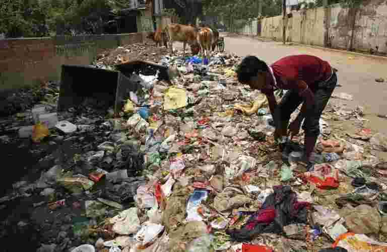 浪费令人毛骨文:经济学规则如何适用于垃圾